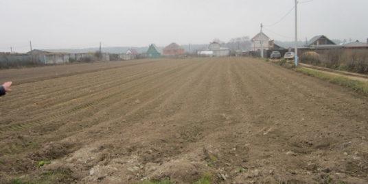 земельный участок 12 соток, с. Царево