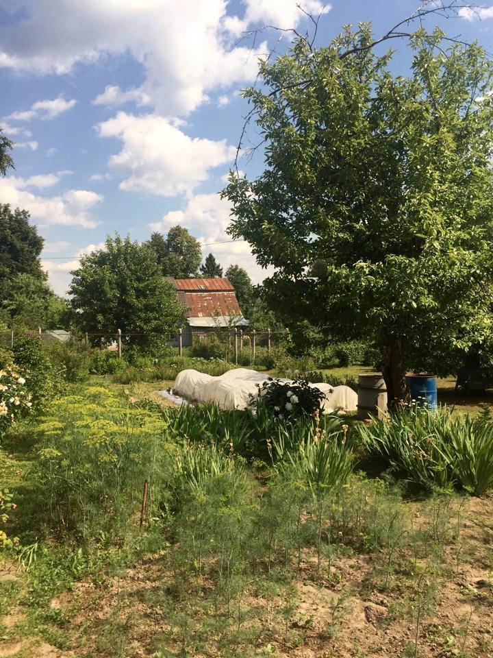 Земельный участок с жилым домом, г. Красноармейск, пос. Балсуниха (ИЖС)