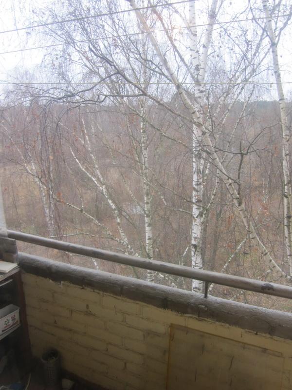 3-комнатная квартира, г. Красноармейск, ул. Новая Жизнь, д.19