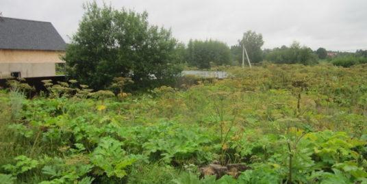 земельный участок 10 соток, г. Красноармейск, ул. Дачная